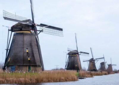 Simulation d'entretien d'embauche en néerlandais
